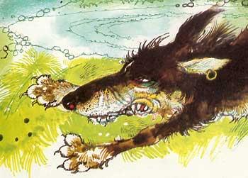 wolfbit
