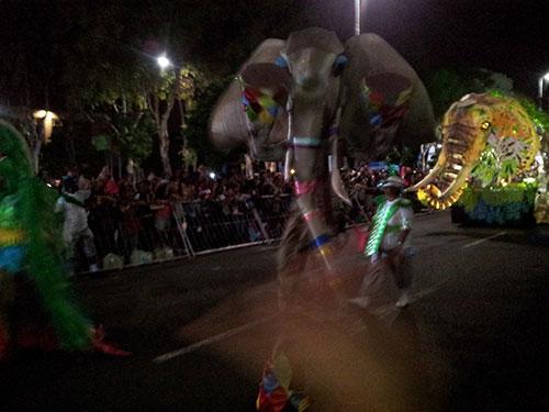 skinny_elephant